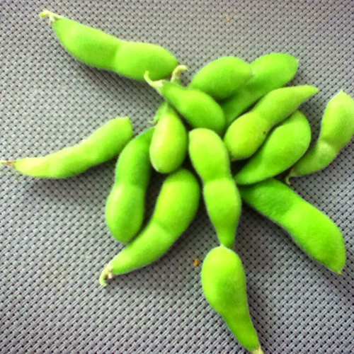 枝豆自家製